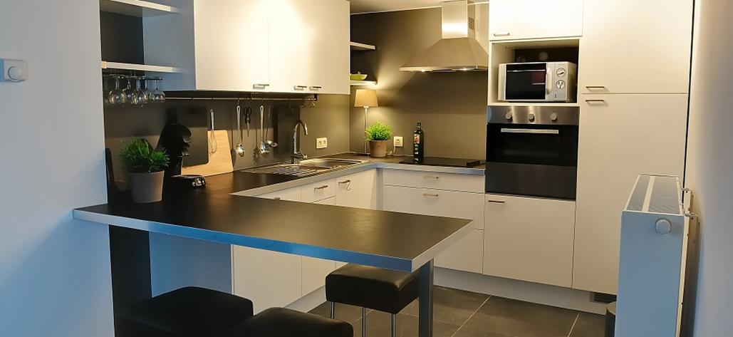 de gemeenschappelijke keuken, met vaatwas, grote koelkast, oven en microwave